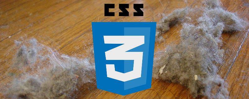 CSS säubern in 5 Schritten - mit Dust-Me