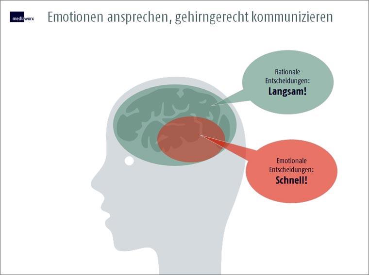 Emotionalität vs. Rationalität
